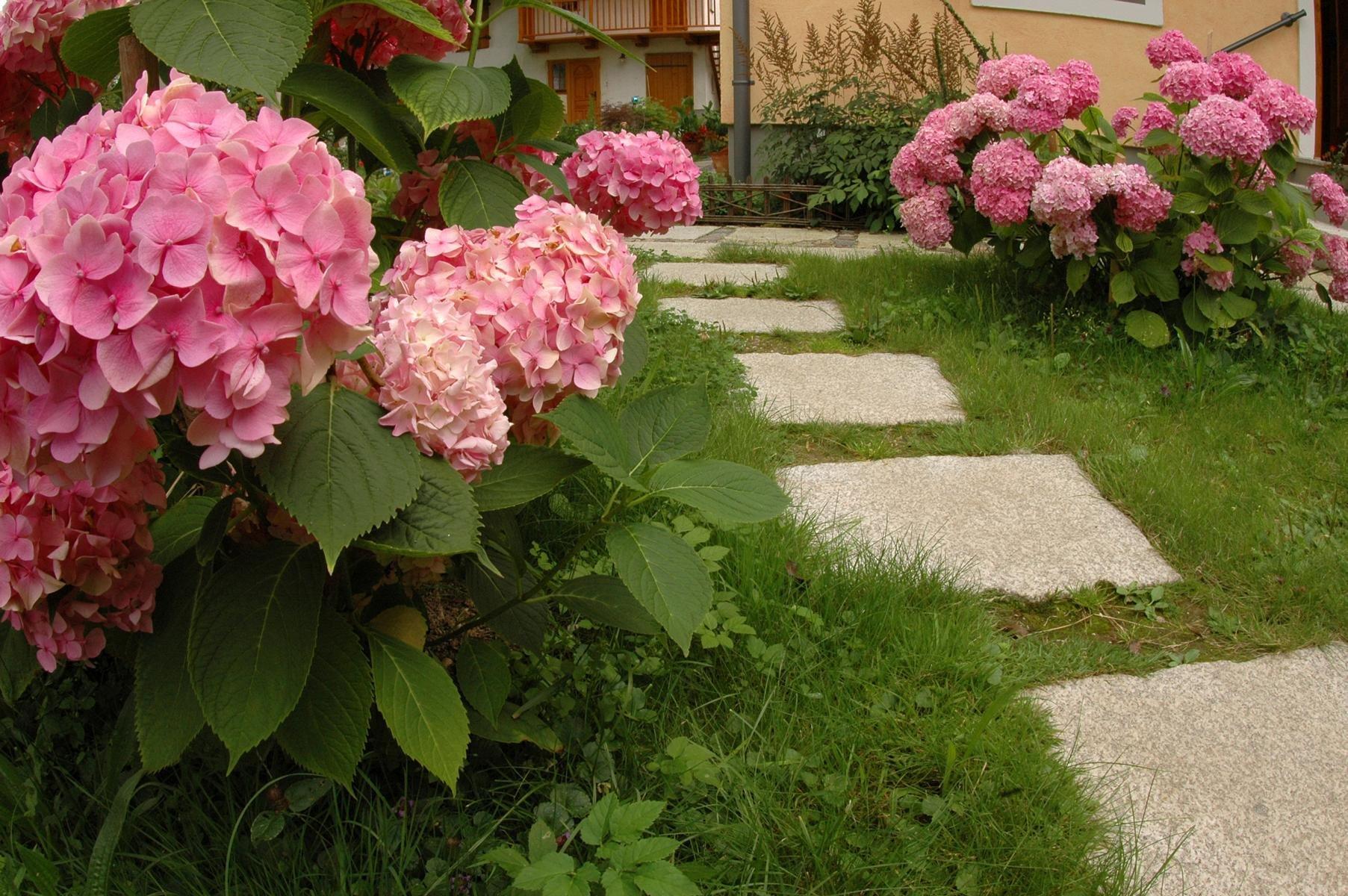 Herschenberger Gartenwegplatten17