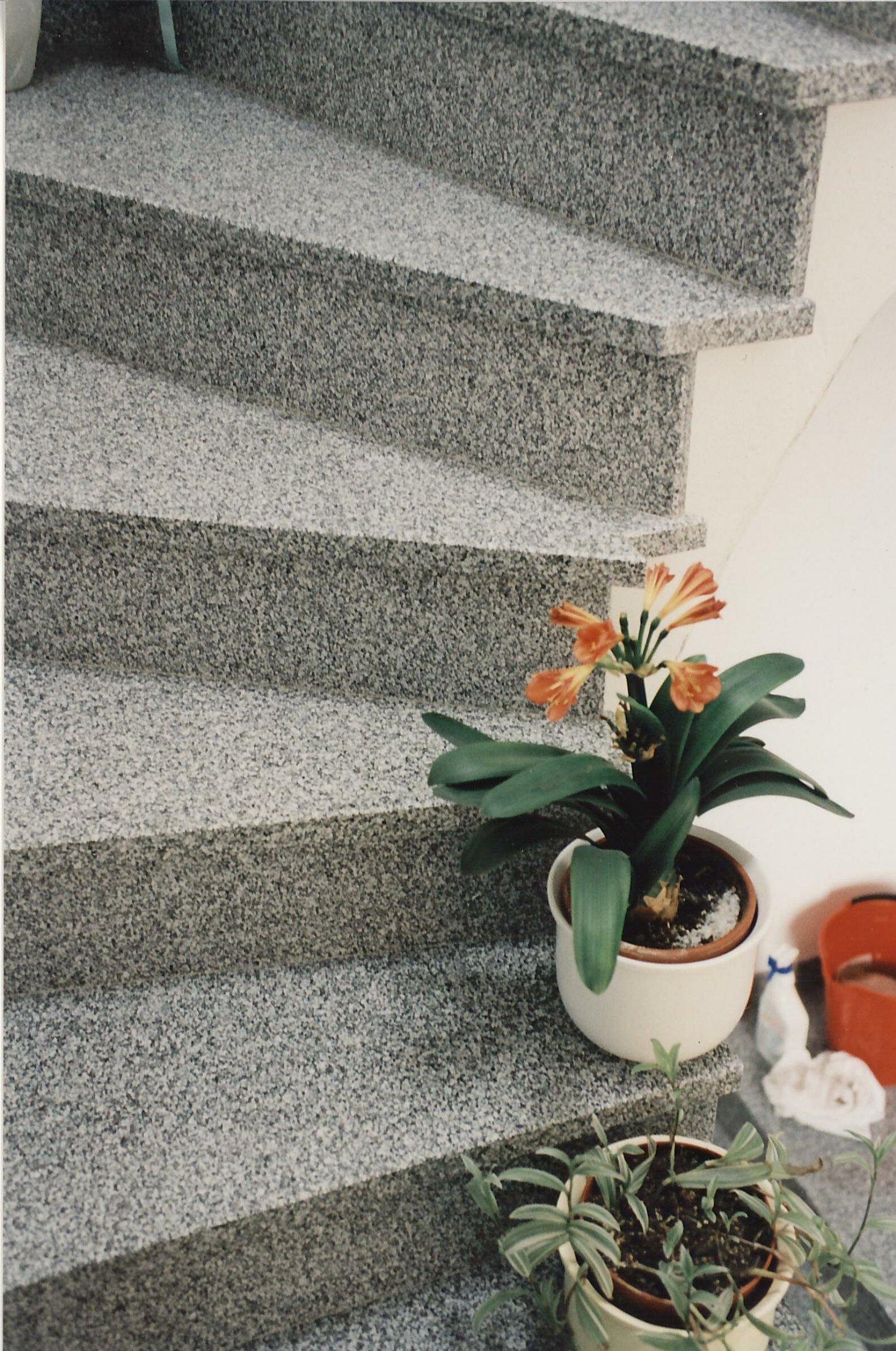Neuhauser Stufen11
