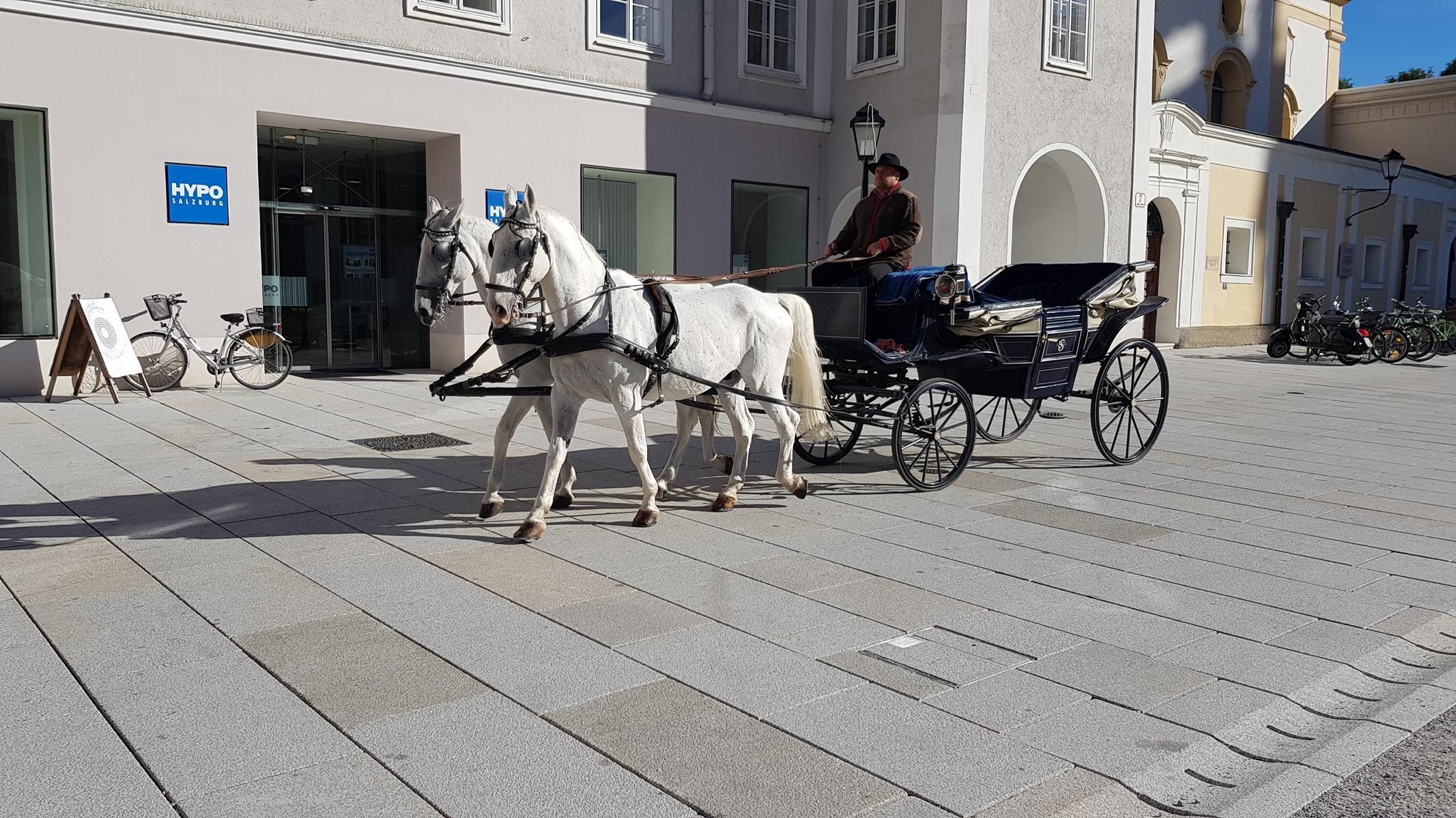 Salzburg - Residenzplatz5